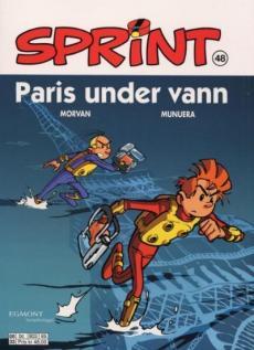 Paris under vann