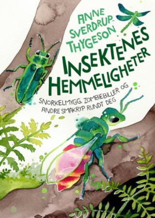 Insektenes hemmeligheter : snorkelmygg, zombiebiller og andre småkryp rundt deg