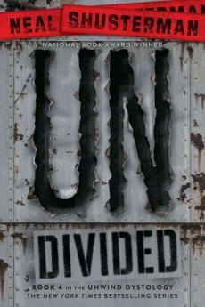 Undivided