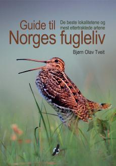 Guide til Norges fugleliv : de beste lokalitetene og mest ettertraktede artene